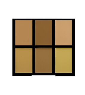 Pro Conceal Palette - Light/Medium